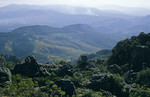 Chimanimani Mountain