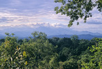 Uluguru Mountains, T